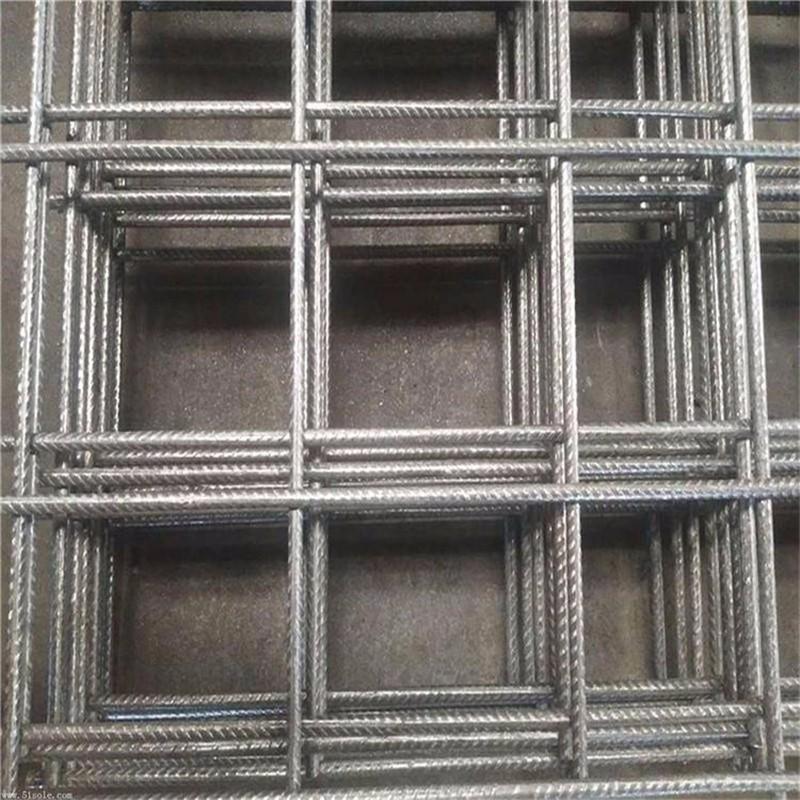 热镀锌电焊网片养殖网.jpg