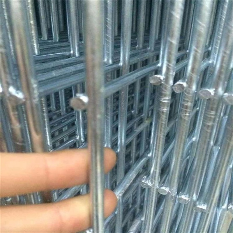热镀锌冷镀锌网片镀锌钢丝网现货.jpg