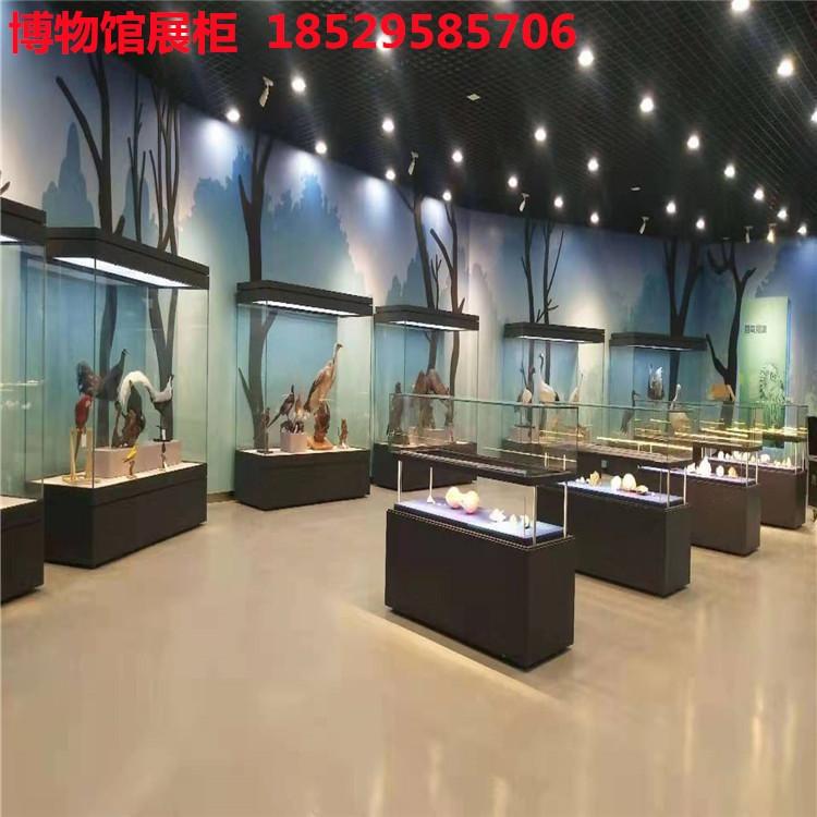 博物館全景玻璃展柜.jpg