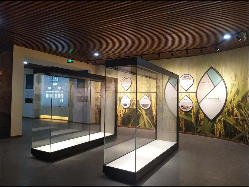 博物館服飾展示柜.png