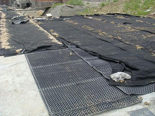 塑料排水板现场施工.jpg