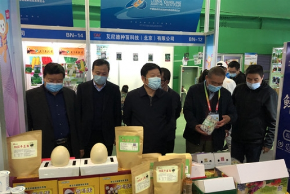 沙巴体育官网开户参加第二十八届中国杨凌农业高新科技成果博览会