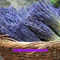 芳香剂香味整理剂茉莉香薰衣草香味整理剂