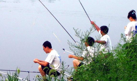 白河岸边野钓