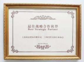 上海美协最佳战略合作伙伴