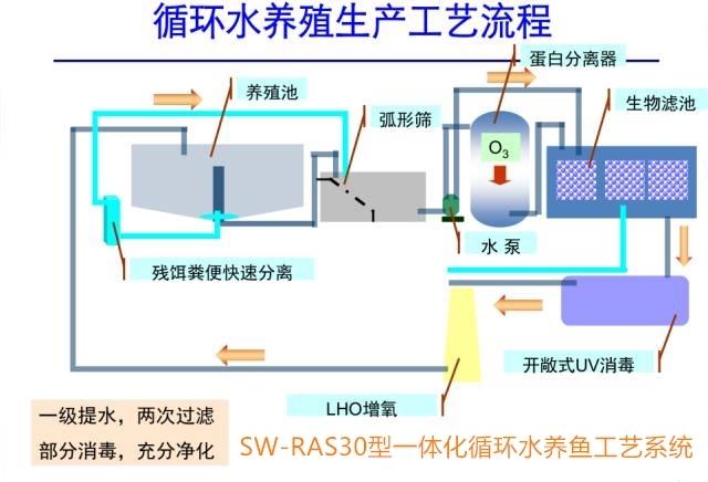 海水循环水养殖工艺流程图.jpg