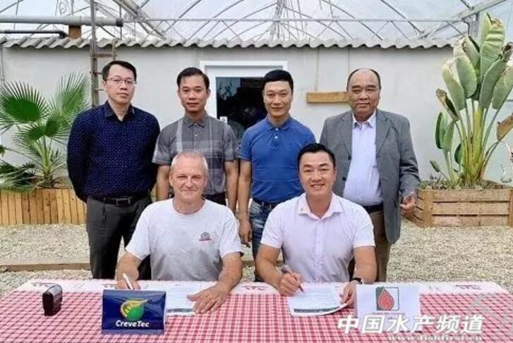 越南引進比利時養蝦技術.jpg