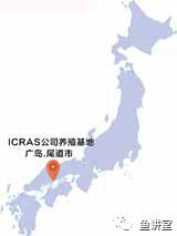 日本循环水养鱼考察.png