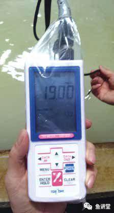 溶氧测试仪.jpeg