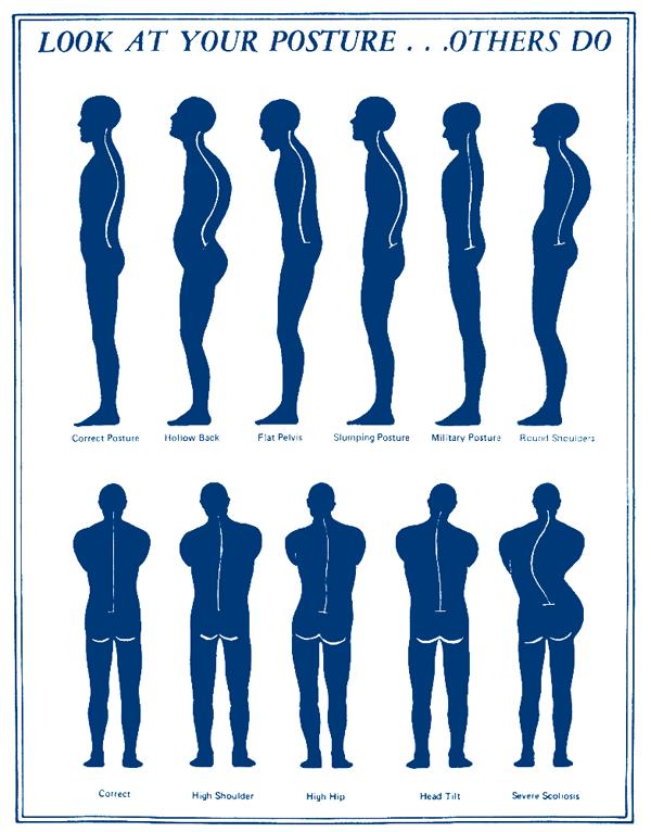 健康脊柱1.png