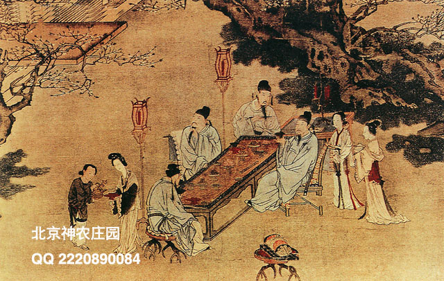 传统文化01副本.jpg