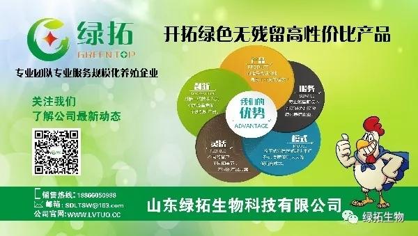 綠色.webp.jpg