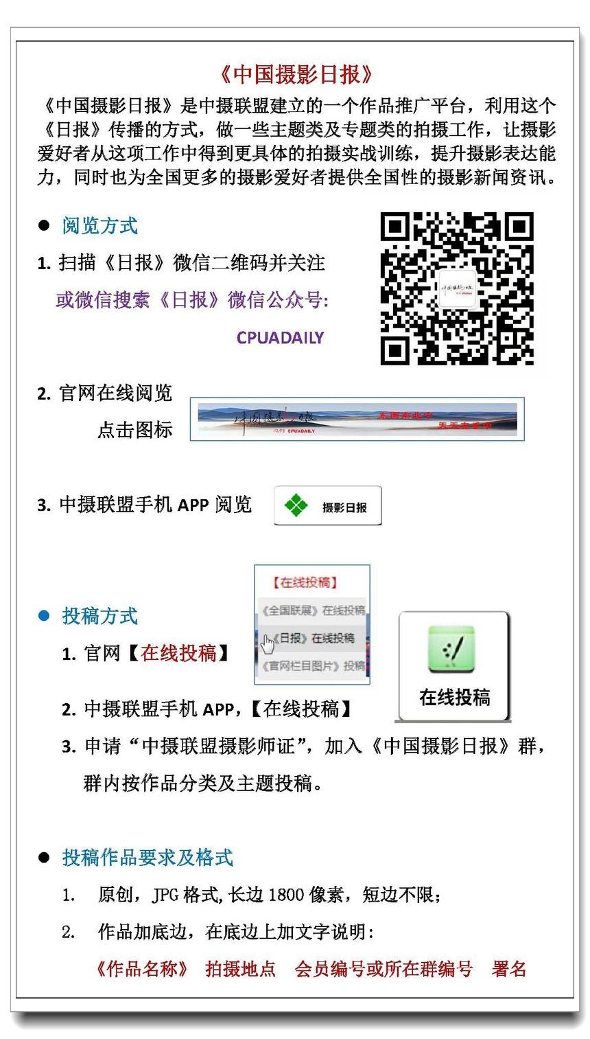 9 中国摄影日报.jpg