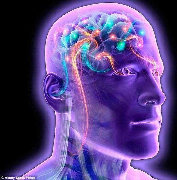"""载入其他人意识的人体,从严格意义上讲并不是人类,但它可能具备我们所认为的""""人类特征"""",比如:理性、类似人类的关注和情感,它可能像人类一样。"""