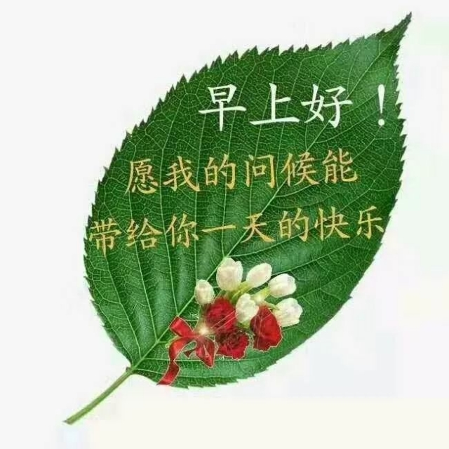 重庆发生: 1、今天处暑 重庆最高温40℃ 2、智博会期间 轨道6号