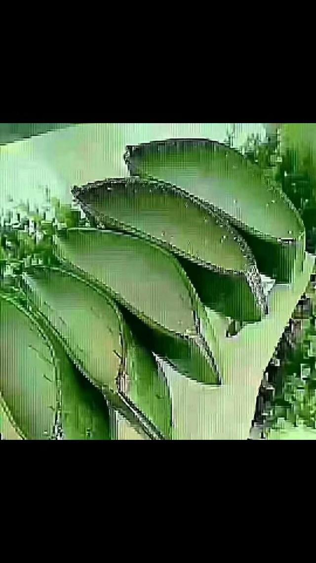 【生活小常识】 芦荟是一种药食兼用的植物。它的功能有六: