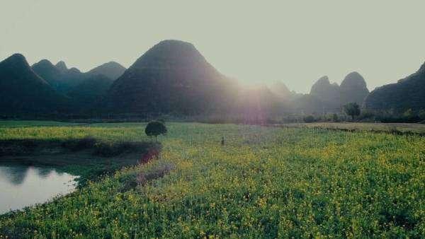桂林山水又登央视!大美烟雨漓江春景,刷爆了朋友圈