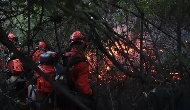 山西晋城森林火灾明火被扑灭,消防救援3天仍未撤离